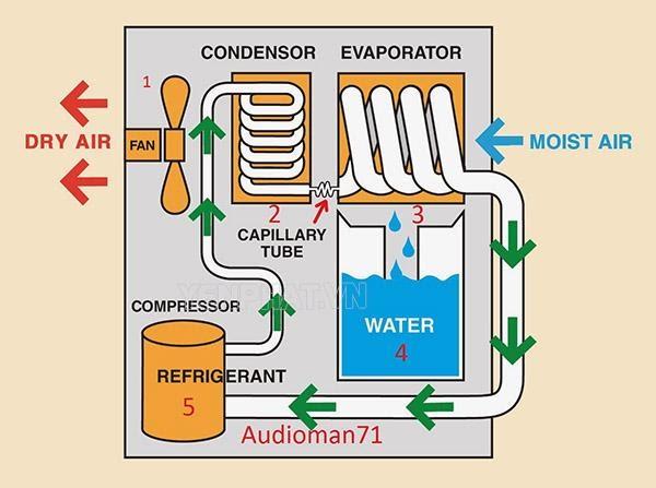 Nguyên lý làm việc của máy hút ẩm Rotor