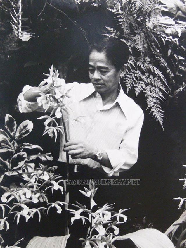 Rapee Sagarik Đam mê nghiên cứu cây phong lan từ khi còn trẻ