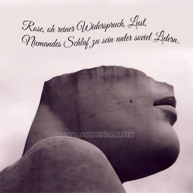 Thơ ca của Rilke mang đậm triết lý sống sâu sắc