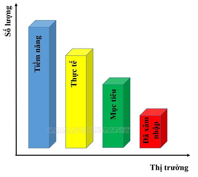 Biểu đồ thể hiện các cấp độ của thị trường mục tiêu