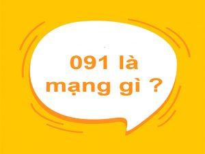 Tìm hiểu chung về đầu số 091 là mạng nào?