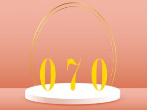 Giới thiệu về dòng sim sô 070 là mạng gì?